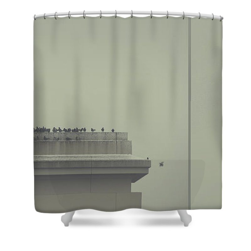 Birds Shower Curtain featuring the photograph Forgiveness by Dana DiPasquale