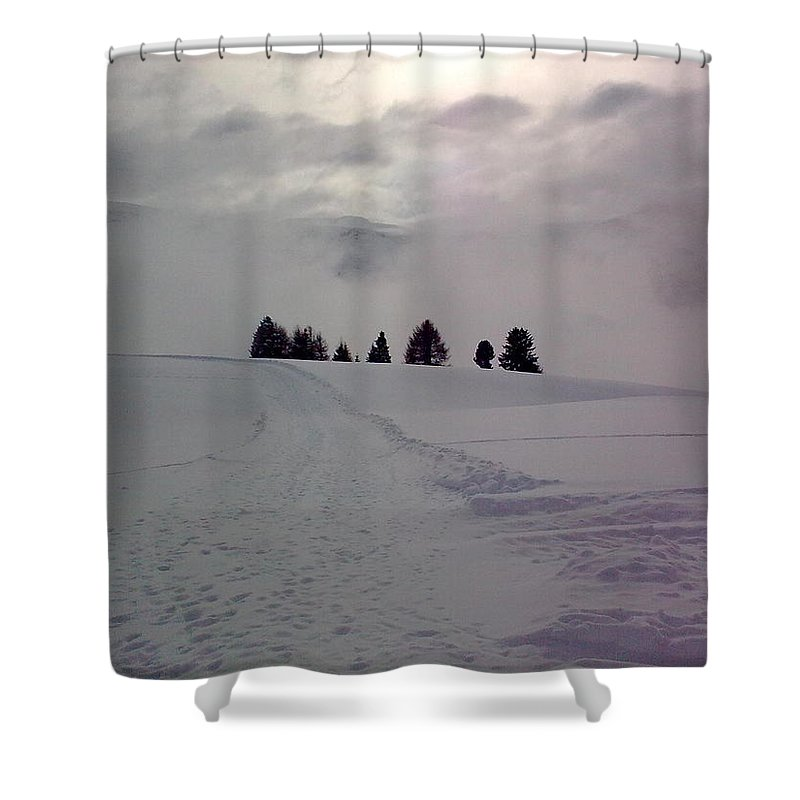 Landscape Shower Curtain featuring the photograph Forlorn Trees by Valerie Ornstein