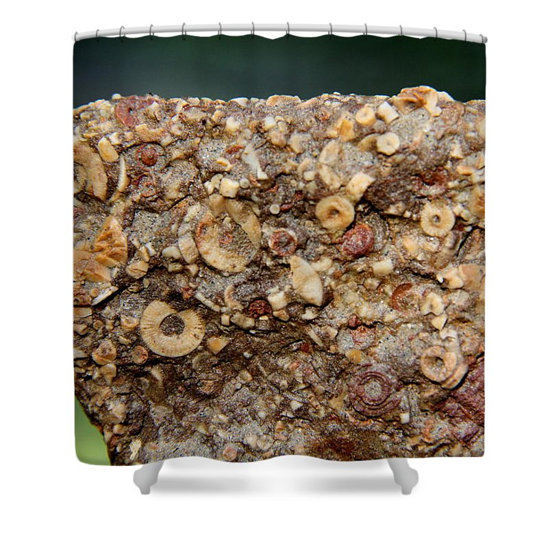 Fossil Fuel Shower Curtain featuring the photograph Fossil Fuel by Edward Smith