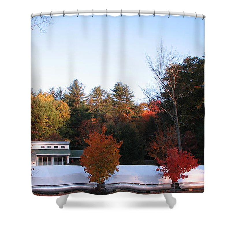 Four Bushes Shower Curtain featuring the photograph Four Bushes by Michael Mooney