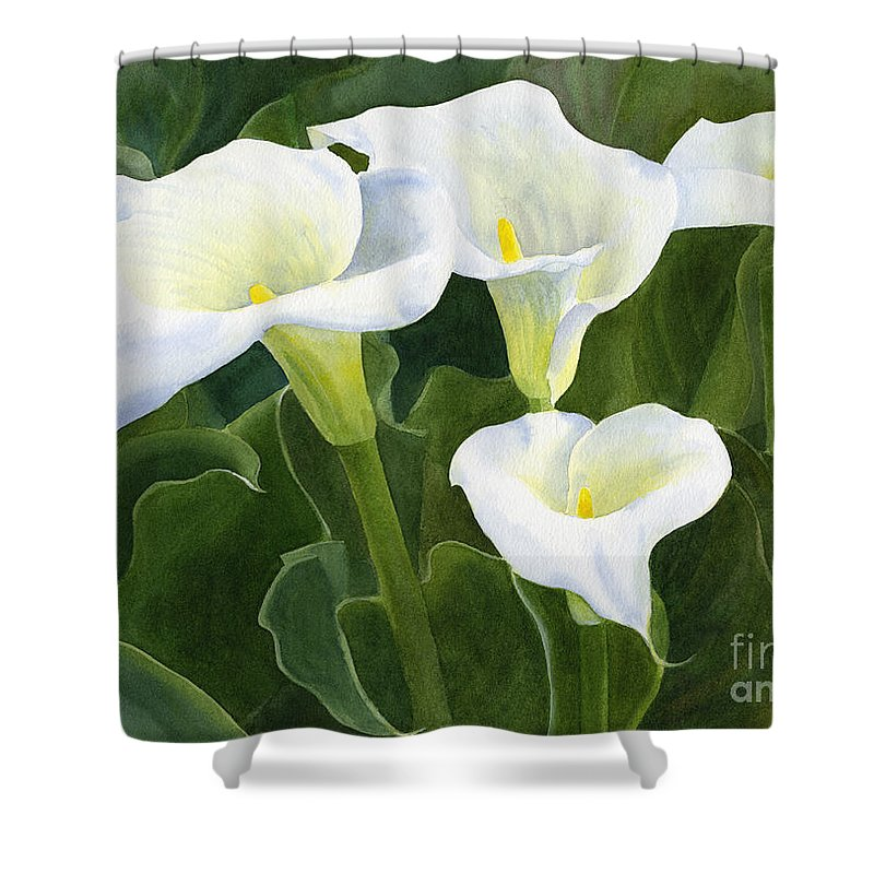 Four Calla Lily Blossoms With Leaves Shower Curtain For Sale By Sharon Freeman