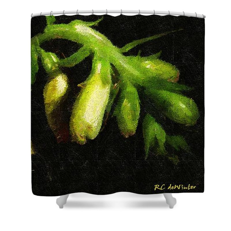 Flowers Shower Curtain featuring the painting Foxglove On Wood Panel by RC DeWinter
