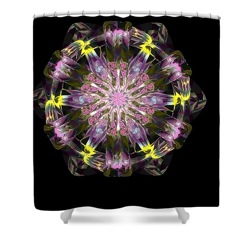 Digital Painting Shower Curtain featuring the digital art Fractal Flowers 10-20-09 by David Lane