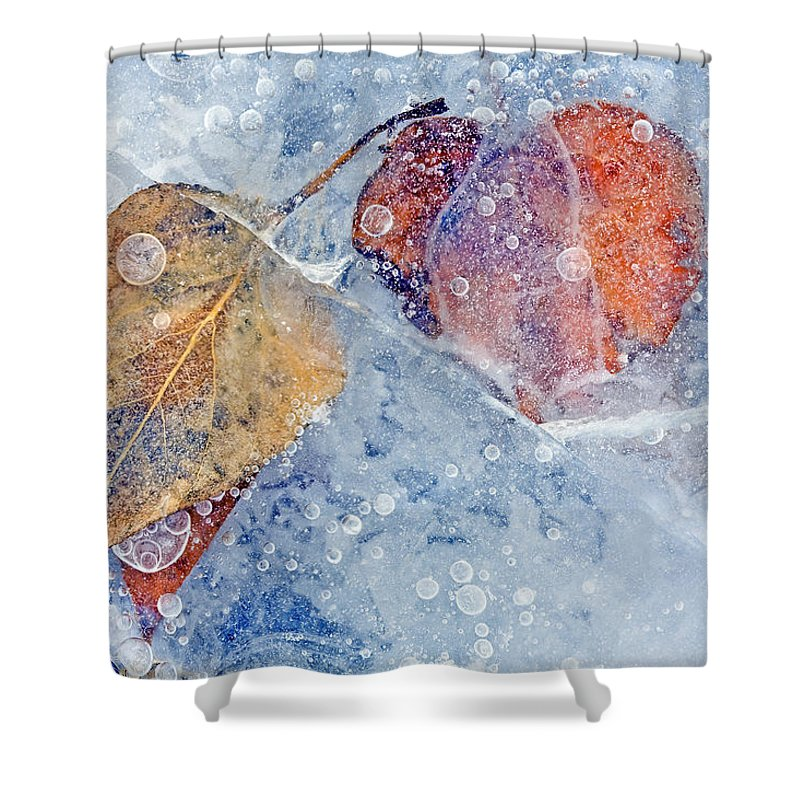 Ice Shower Curtain featuring the photograph Fractured Seasons by Mike Dawson