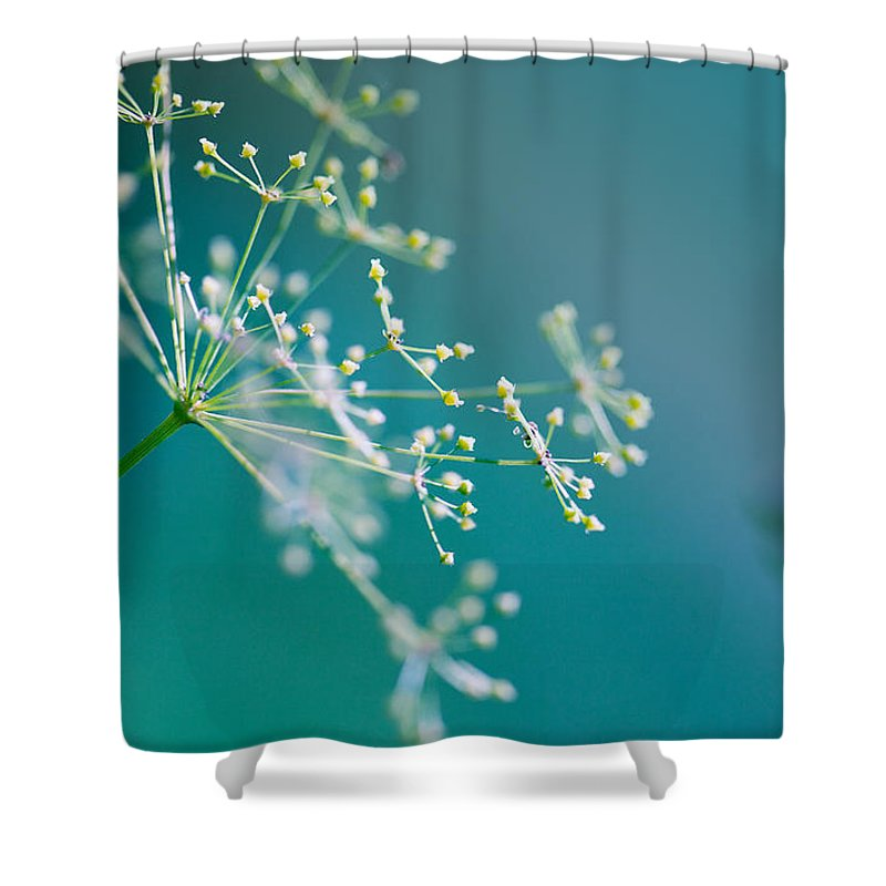 Herbs Photographs Shower Curtains