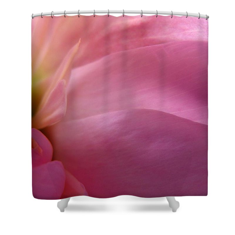Flower Shower Curtain featuring the photograph Fragment by Rhonda Barrett
