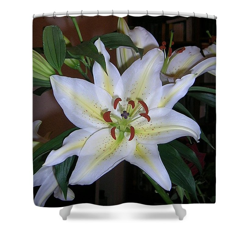 Flower Shower Curtain featuring the photograph Fragrant White Lily by Valerie Ornstein