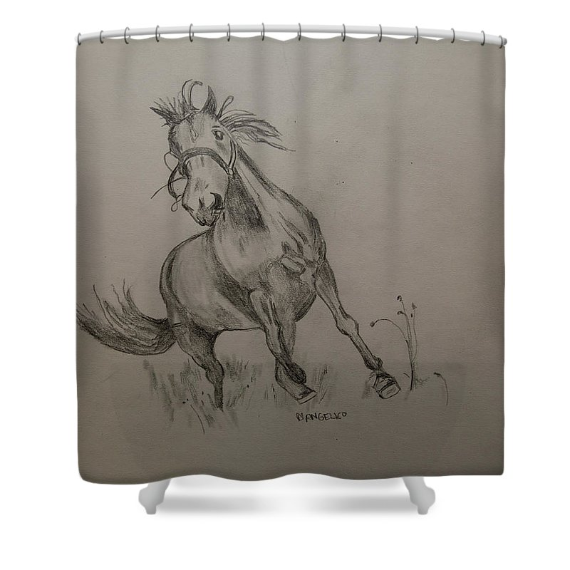 Horse Shower Curtain featuring the drawing Free Time by D Angelico