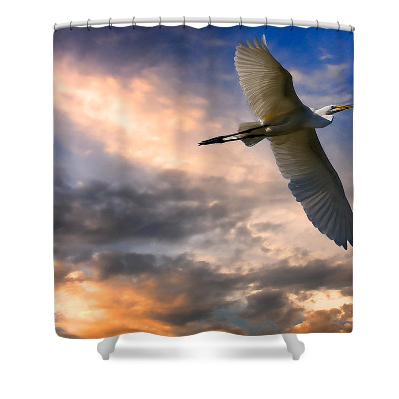 Egret Shower Curtain featuring the photograph Freedom by Chris Lord