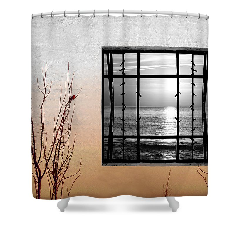 Digital Shower Curtain featuring the photograph Freeze by Munir Alawi