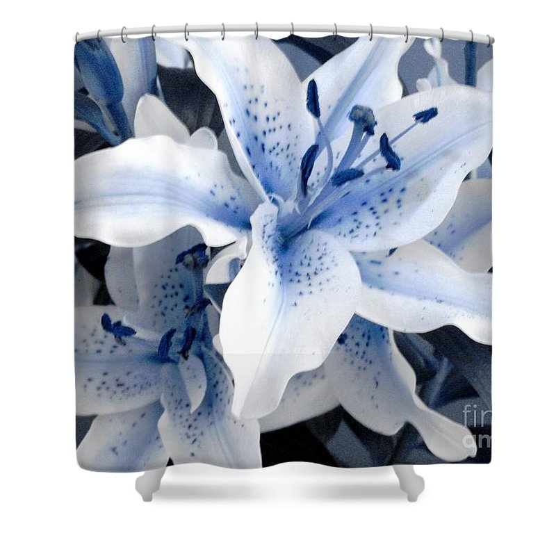 Blue Shower Curtain featuring the photograph Freeze by Shelley Jones
