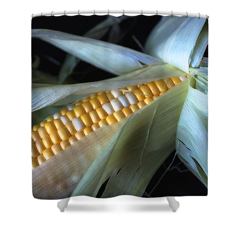 Vegetable Shower Curtain featuring the photograph Fresh Picked by Jenny Hudson