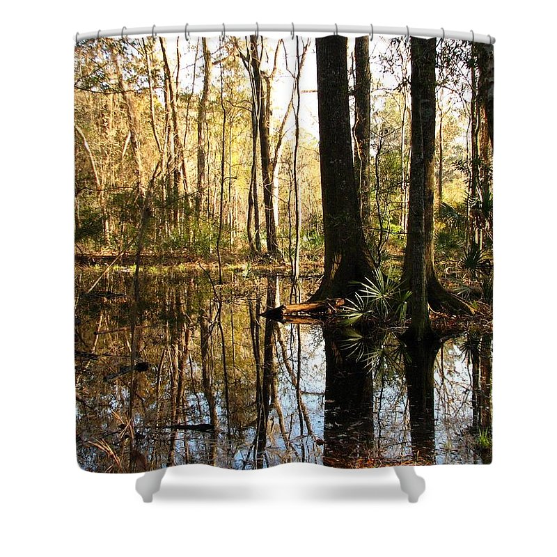 Woods Shower Curtain featuring the photograph Friday Hill Reflections 1 by J M Farris Photography