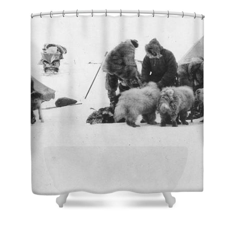 1890s Shower Curtain featuring the painting Fridtjof Nansen (1861-1930) by Granger