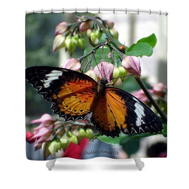 Photography Shower Curtain featuring the photograph Friends Come In Small Packages by Shelley Jones