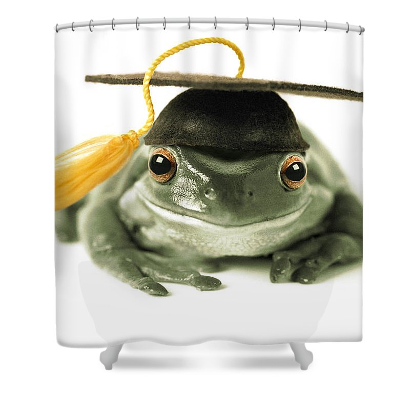 Light Shower Curtain featuring the photograph Frog Graduate by Darwin Wiggett