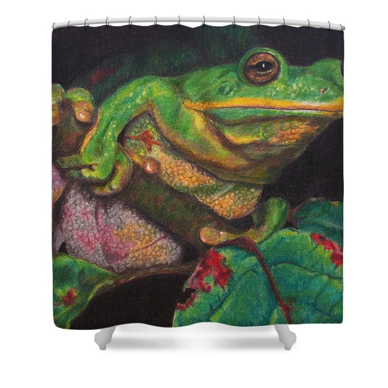 Frog Shower Curtain featuring the painting Froggie by Karen Ilari