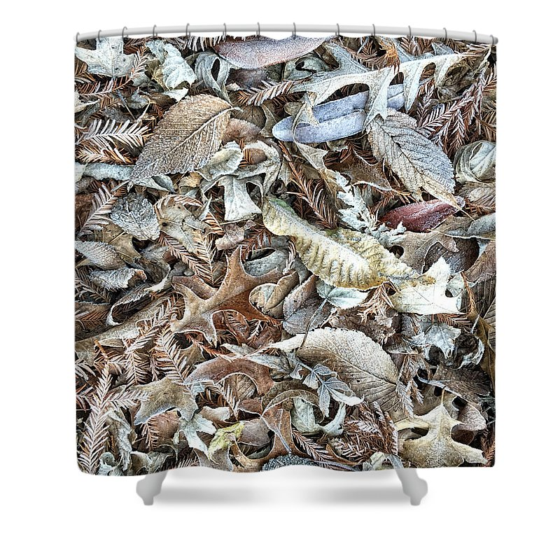 Leaf Shower Curtain featuring the photograph Frost On The Leaves I by Karin Everhart