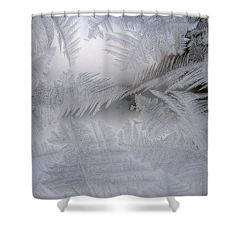 Frost Shower Curtain featuring the photograph Frosted Pane by Rhonda Barrett