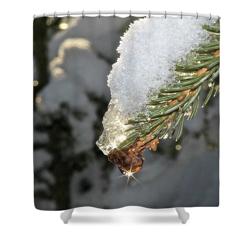 Snow Shower Curtain featuring the photograph Frosty Drip by Rick Monyahan
