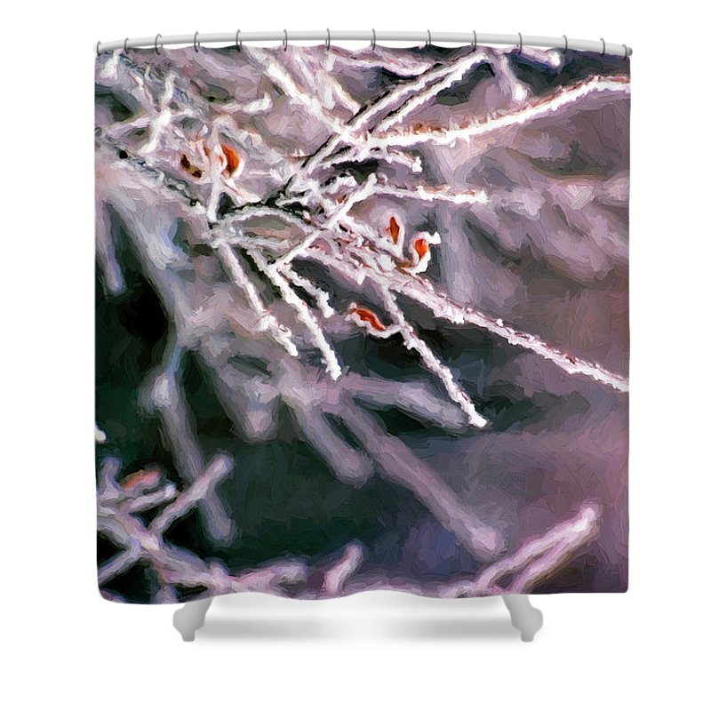 Frost Shower Curtain featuring the digital art Frosty Twigs by Casey Heisler