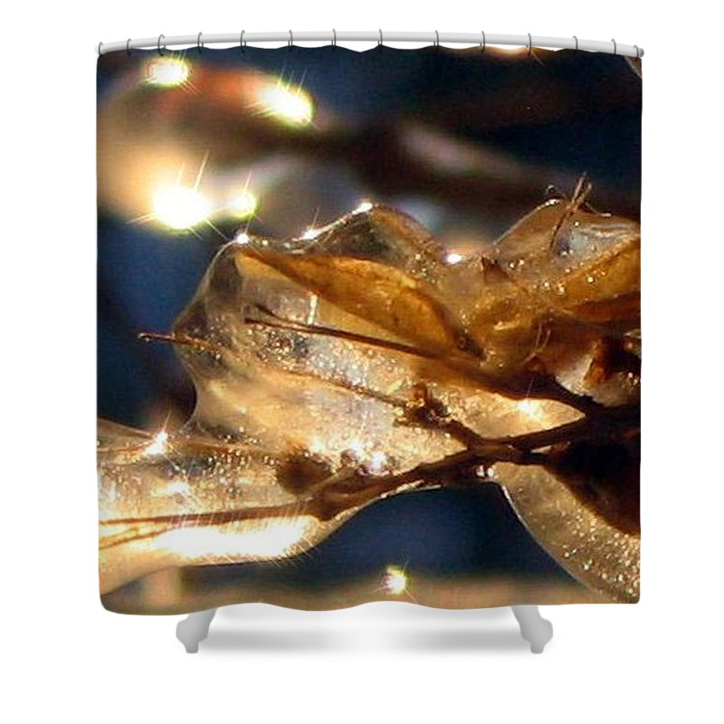Photography Shower Curtain featuring the photograph Frozen Fairy by Dawn Marshall