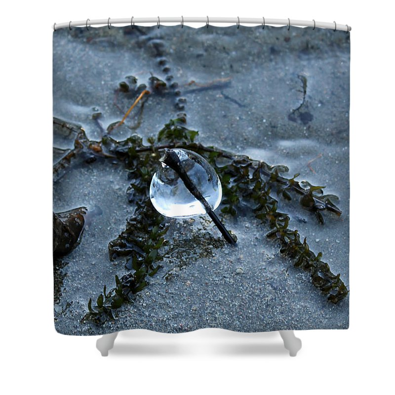 Ice Shower Curtain featuring the photograph Frozen In Time by Margre Flikweert