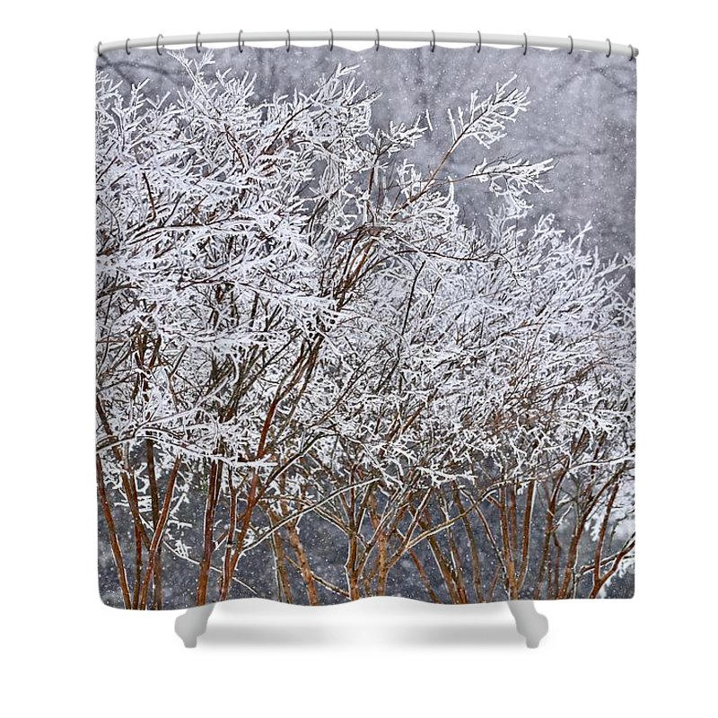Climate Shower Curtain featuring the photograph Frozen Trees During Winter Storm by Jeramey Lende