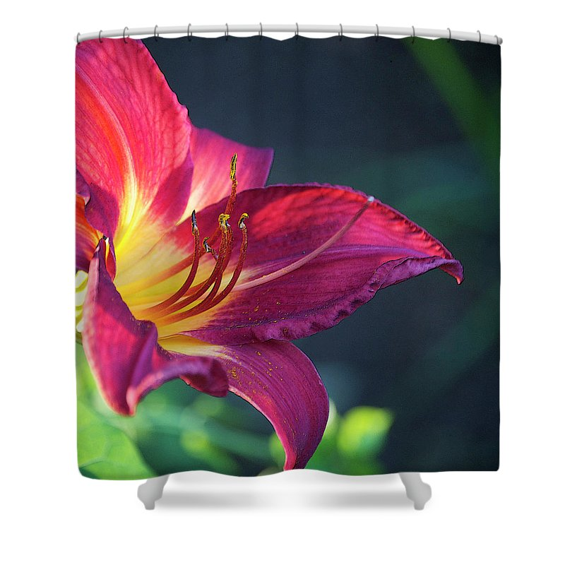 Square Shower Curtain featuring the photograph Fuchsia Glow by Debbie Karnes