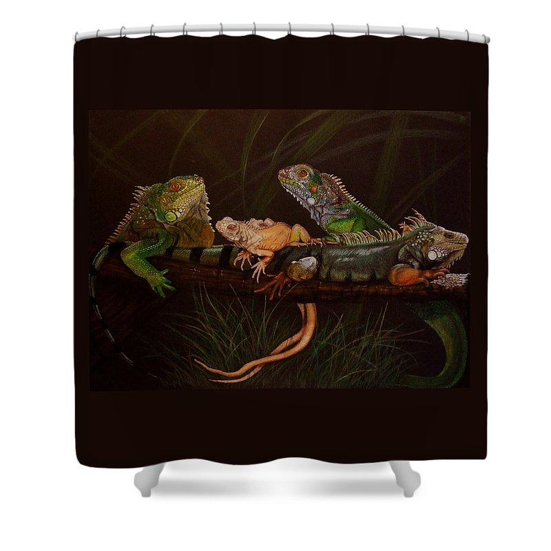 Iguana Shower Curtain featuring the drawing Full House by Barbara Keith