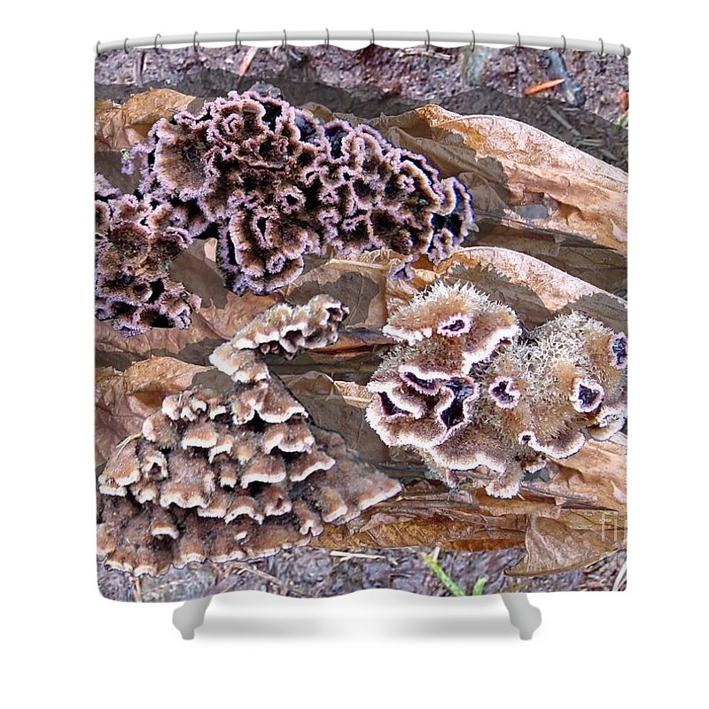 Fungi Art Shower Curtain featuring the digital art Fun Guy by Ron Bissett