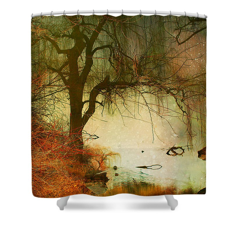 Refections Shower Curtain featuring the photograph Funky Reflections 2 by Tara Turner