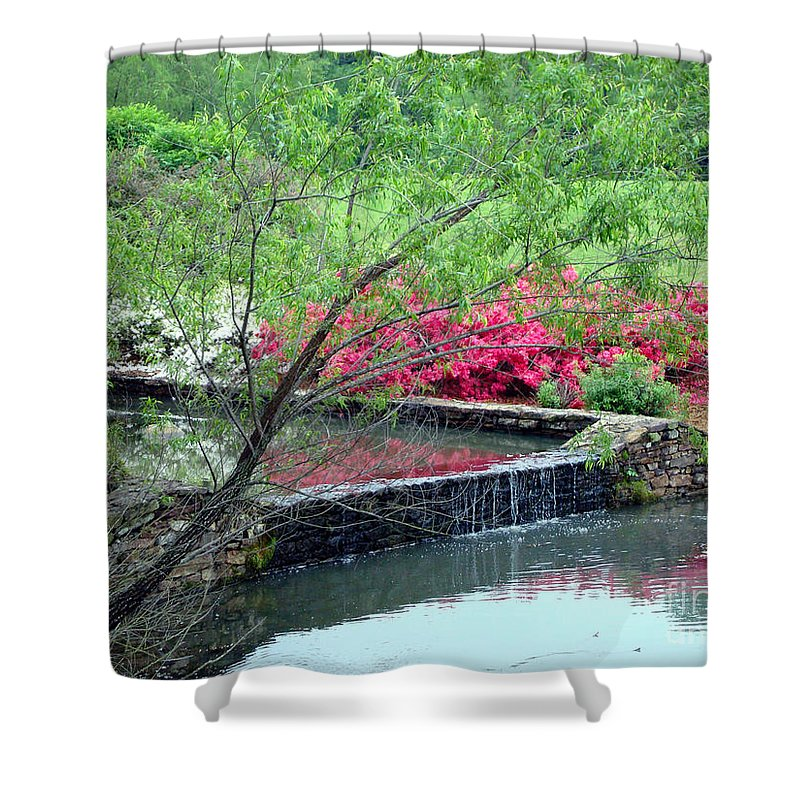 Spring Shower Curtain featuring the photograph Garden Delight by Kathy Bucari