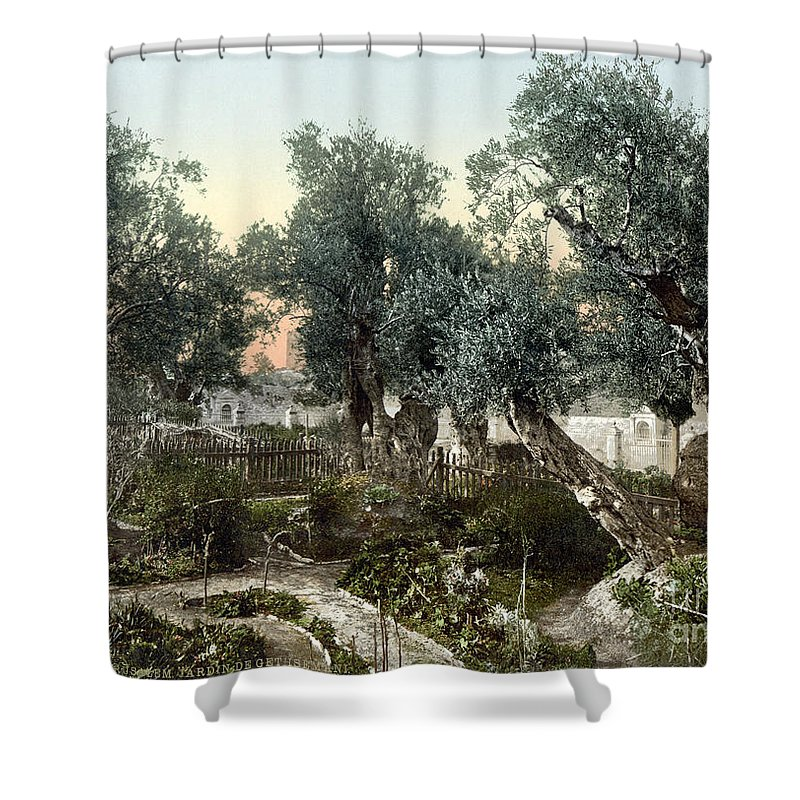 1900 Shower Curtain featuring the photograph Garden Of Gethsemane by Granger