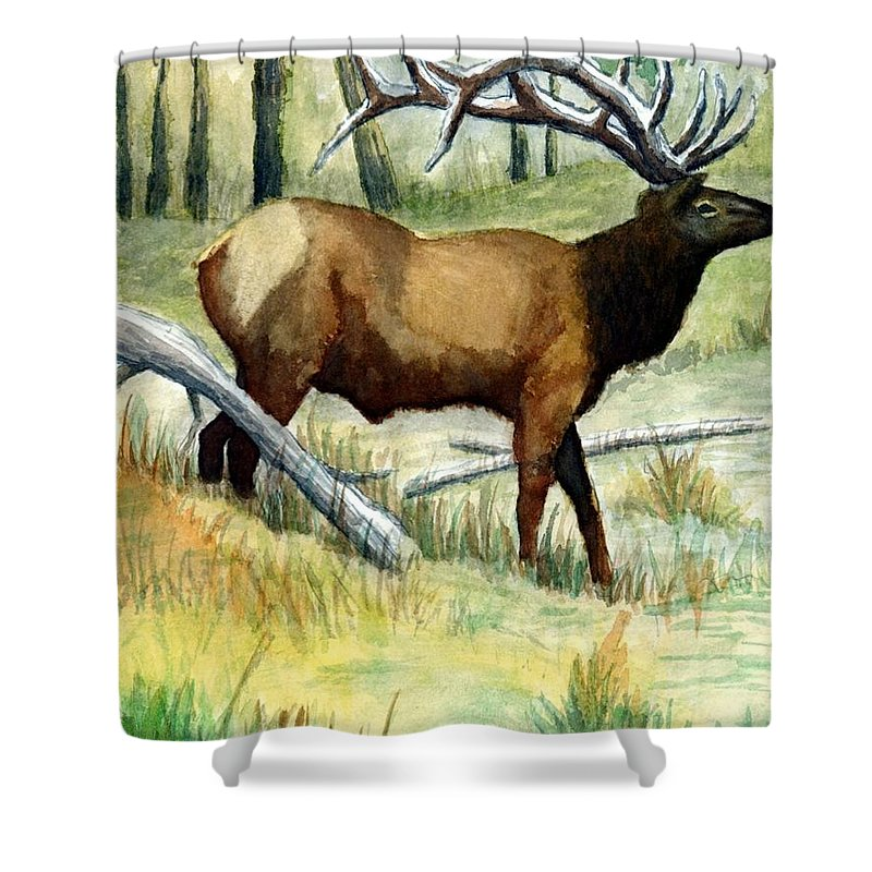 Wildlife Shower Curtain featuring the painting Gash Flats Bull by Jimmy Smith