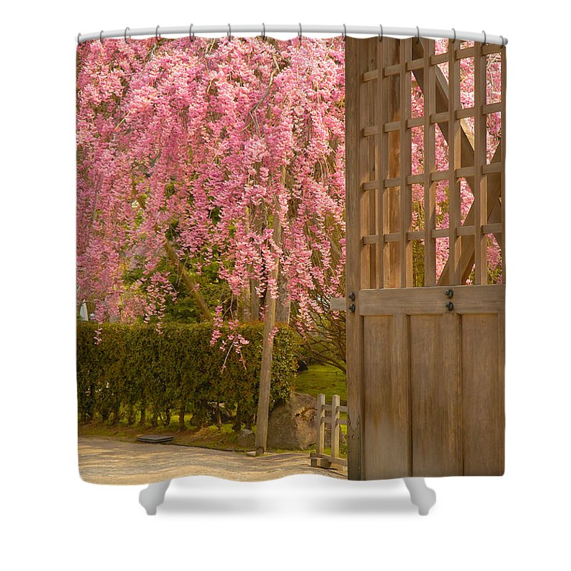 Japan Shower Curtain featuring the photograph Gate by Sebastian Musial