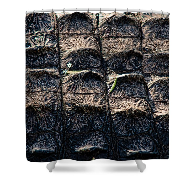 Alligator Shower Curtain featuring the photograph Gator Armor by Christopher Holmes