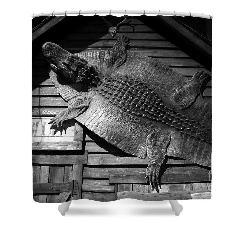 Alligator Shower Curtain featuring the photograph Gator Hide by David Lee Thompson