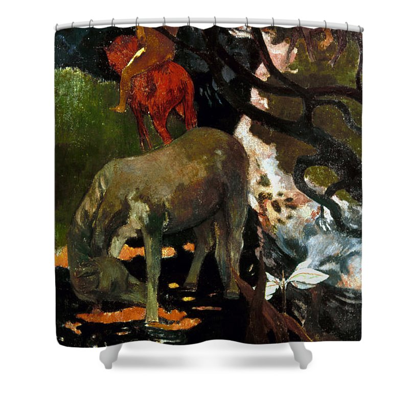 1898 Shower Curtain featuring the photograph Gauguin: White Horse, 1898 by Granger