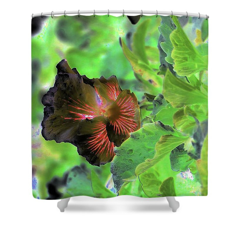 Abstract Shower Curtain featuring the photograph Gazing Up by Jeff Swan