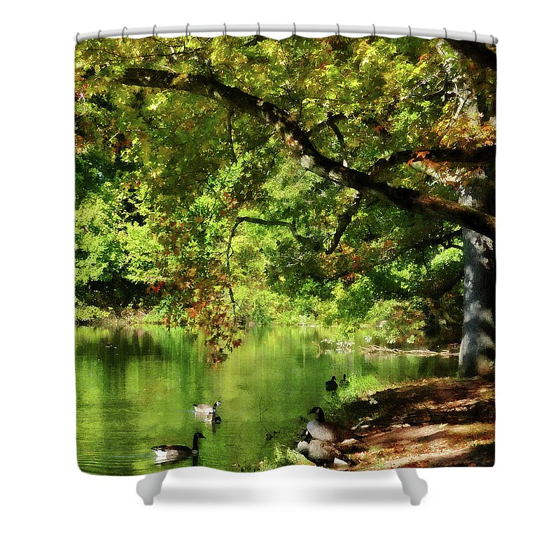 Goose Shower Curtain featuring the photograph Geese By Pond In Autumn by Susan Savad