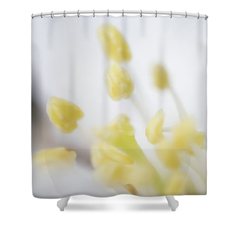 Abstract Shower Curtain featuring the photograph Gentle by Ilka B