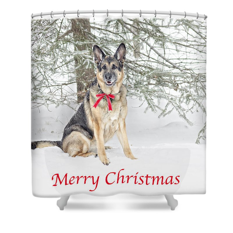 Merry Christmas In German.German Shepherd Dog Merry Christmas Shower Curtain