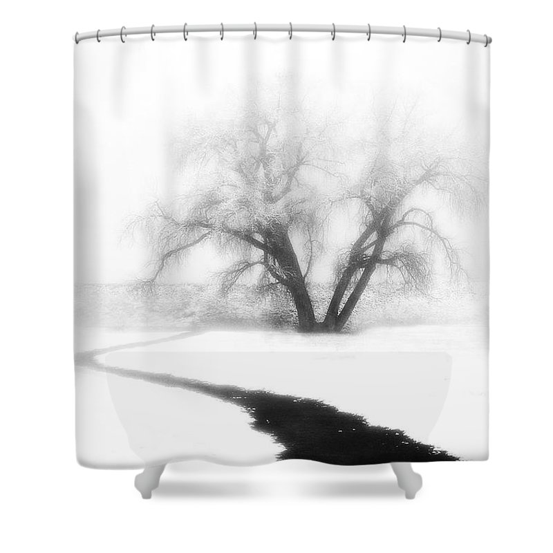 Tree Shower Curtain featuring the photograph Getting There by Marilyn Hunt