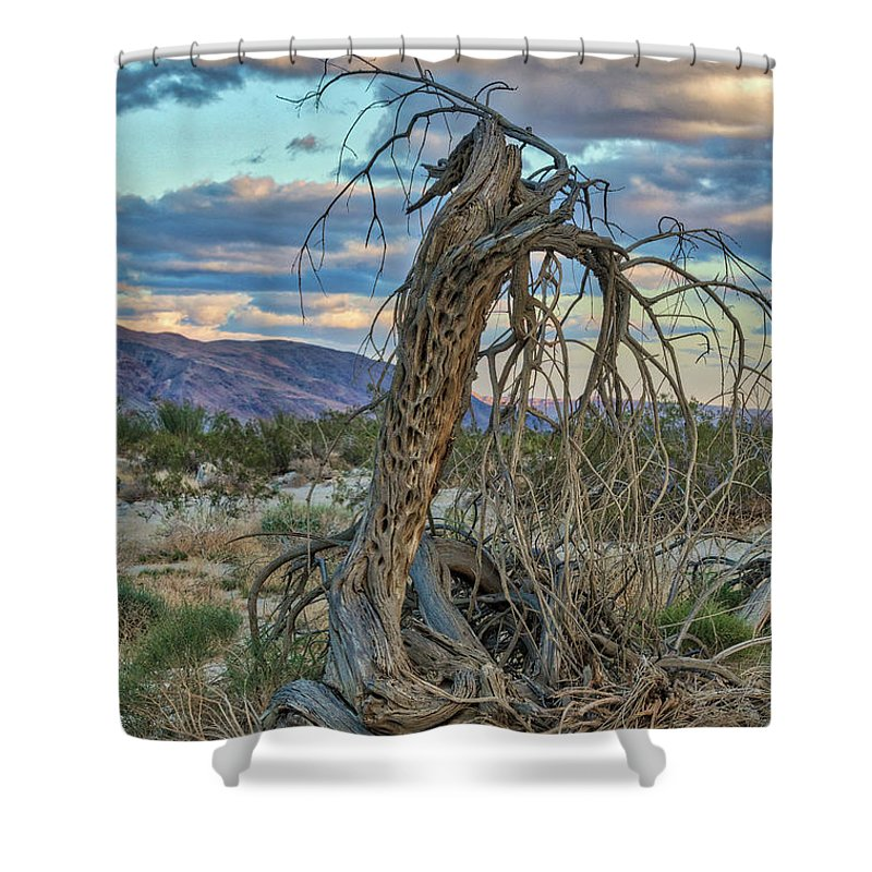 California Shower Curtain featuring the photograph Ghost Tree by William Ferry