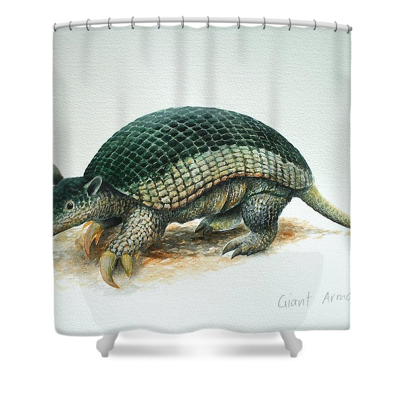 Giant Armadillo Shower Curtain featuring the painting Giant Armadillo by Christopher Cox