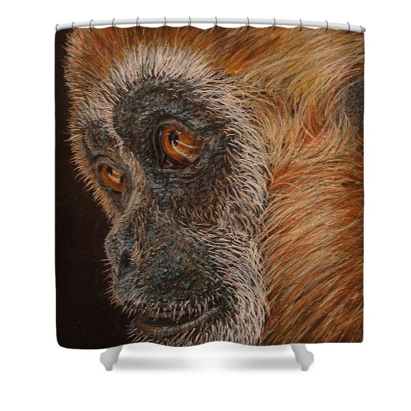 Animals Shower Curtain featuring the drawing Gibbon by Karen Ilari