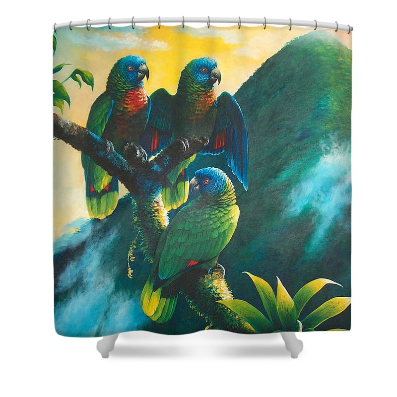 Chris Cox Shower Curtain featuring the painting Gimie Dawn 1 - St. Lucia Parrots by Christopher Cox