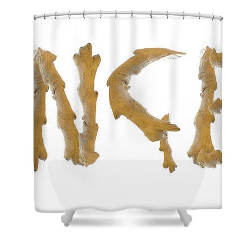 Eastern Cuisine Shower Curtain featuring the digital art Ginger Ginger by Richard Wareham