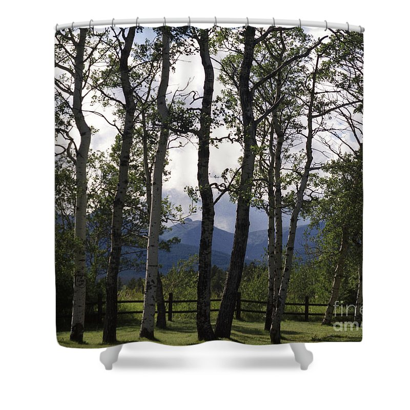 Shower Curtain featuring the photograph Glacier National Park Green Trees Mountains by Heather Kirk
